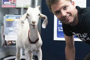 Gary the Goat in Australia with Jimbo