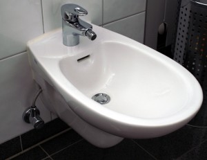 A bidet, of a type visible from Stoke canal