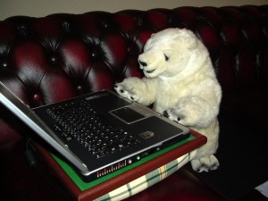 Gregory the polar  bear from Montreal