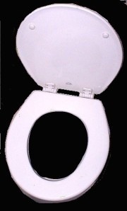 A bottom-shaped toilet seat as it was meant to be