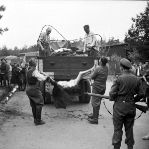 Former guards are made to load the bodies of dead prisoners onto a truck for burial, April 17–18, 1945