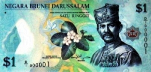 The Sultan of Brunei's personal identity card for all occasions
