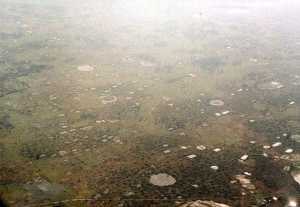 American B-52 bomb craters in central Cambodia, 1989