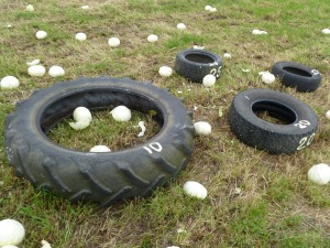 Cabbages hurled at tyre targets