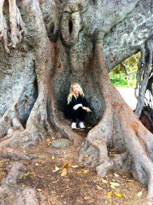 Sara in her favourite tree in Beverly Hills