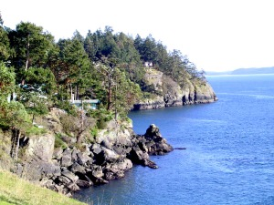 On Pender Island, there was a man who disliked furniture