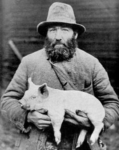 Swedish farmer holds pig, early 20th century