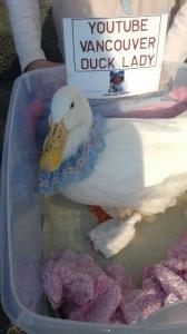 Anna Smith - Bobby The Duck