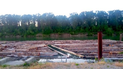 Logs_FraserRiver_Vancouver