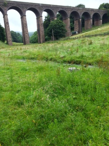 Mr Twonkey stared at the viaduct and the grass near Buxton