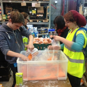 Helpers hard at work in one of the jungle warehouses